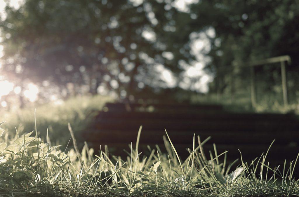 一日一字を記さば、一年にして三百六十字を得、 一夜一時を怠らば、百歳の間三万六千時を失う