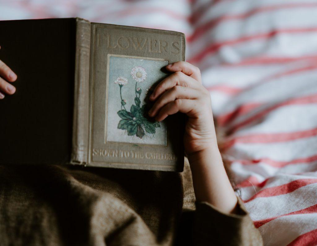 お風呂・ご飯・睡眠・読書、、、ああ読書が止まらない。