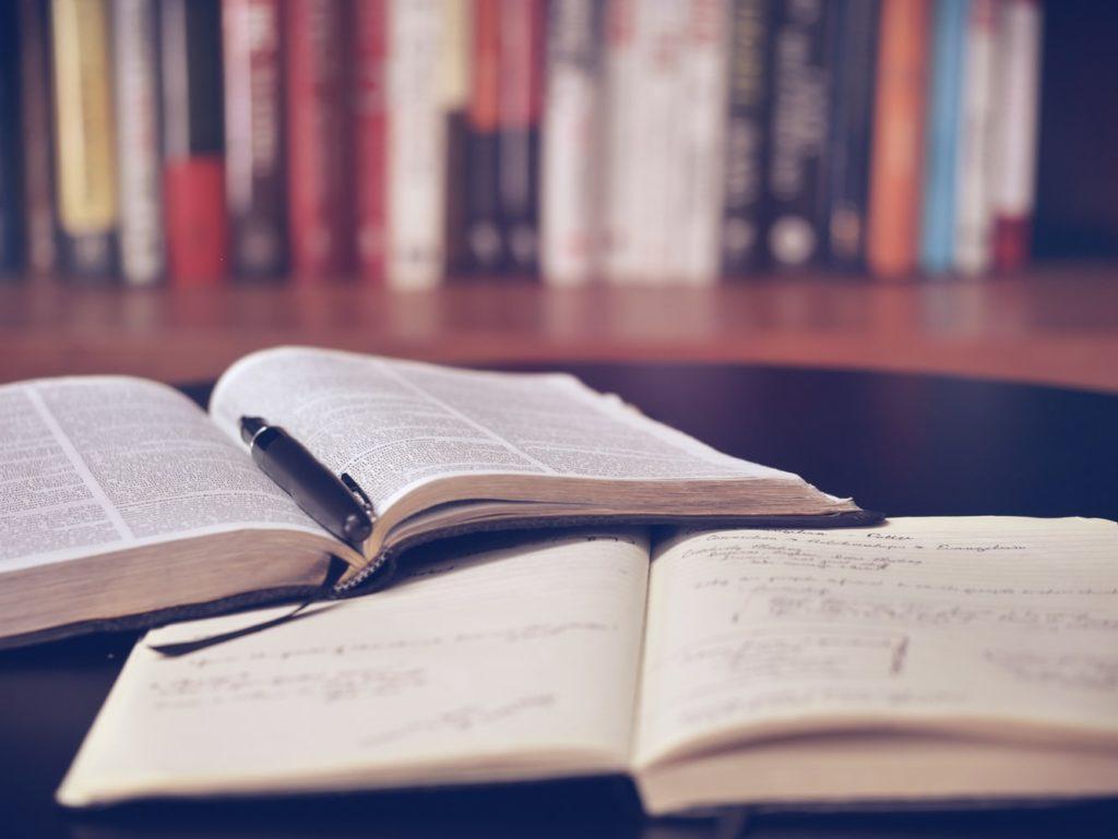 ひたすら英語勉強すればスコア・実力は上がるのか?【残念な人を紹介】
