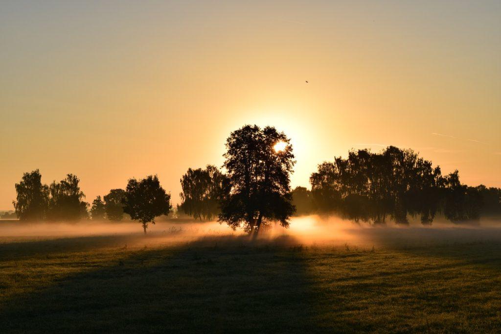 早起きを克服して、実り大きい人生を