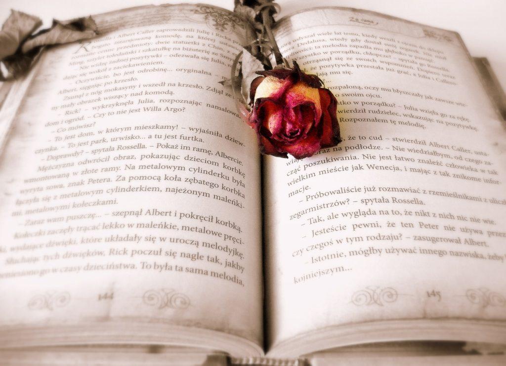 本を読まないデメリットは機会損失です