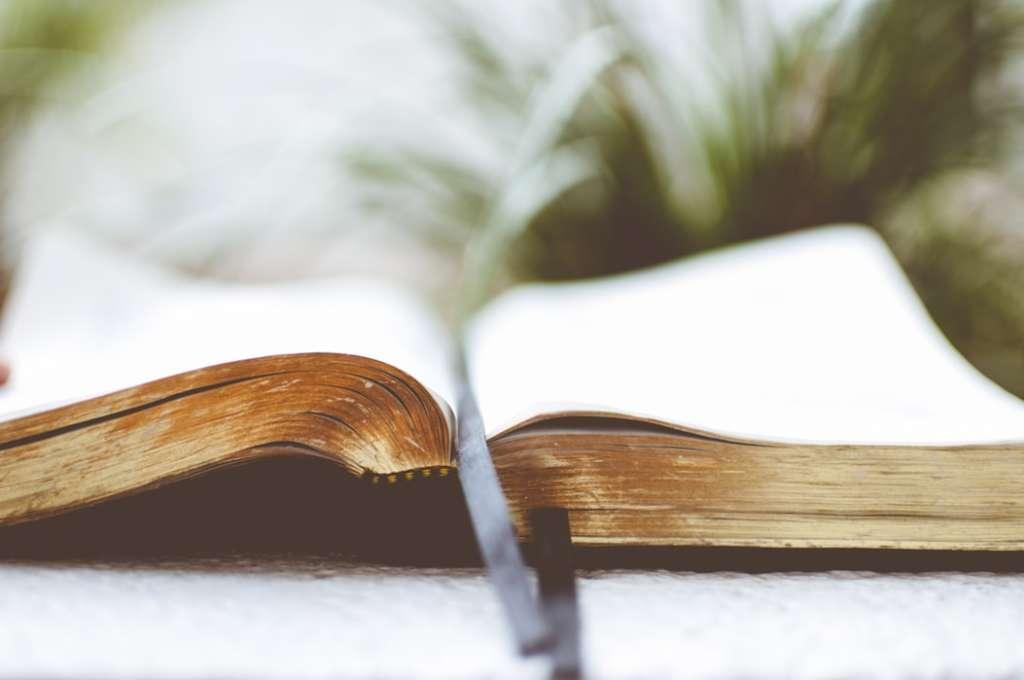 人生で少しずつ読書を活用していこう