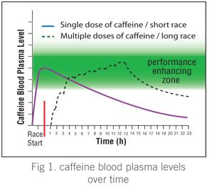 血中のカフェイン濃度